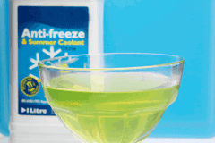 Anti-Freeze-Kills-An-Estimated-90000-Animals-A-Year